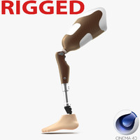 3d model prosthetic leg rigged