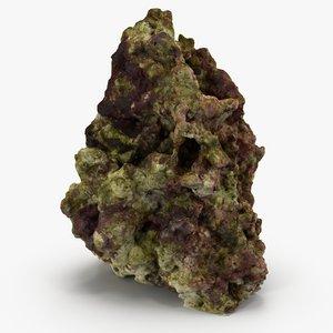 max reef rock