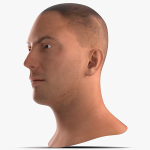 3ds male head