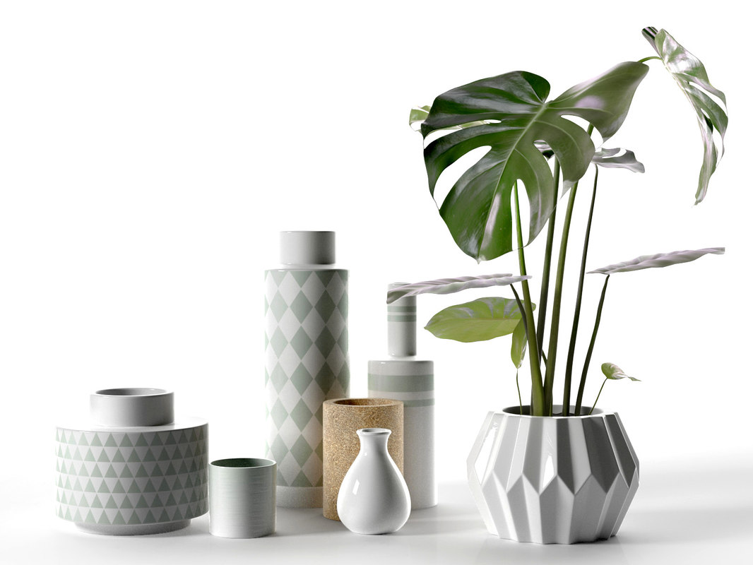 vase set monstera plant 3d model