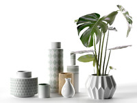 vase set monstera plant 3d model