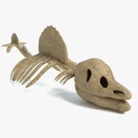 3d dinosaur skeleton