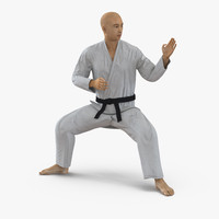 3d japanese karate fighter rigged model
