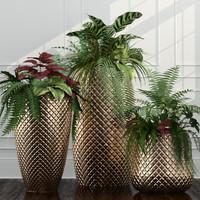 plants obj