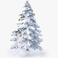 snowy spruce_v1