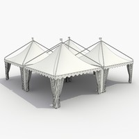 Party Tent_8