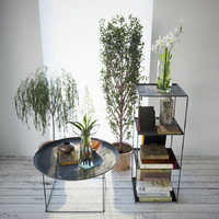 Small plants with decor