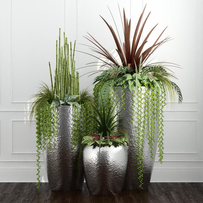 plants 3d obj