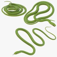 green snake poses 3d model