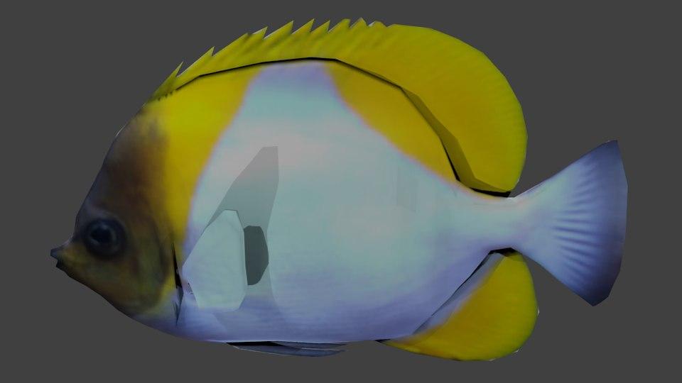 pyramid butterflyfish 3d blend