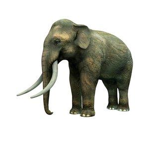 asian elephant 3ds