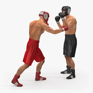 3d boxers fighting