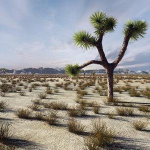 3d model desert landscape