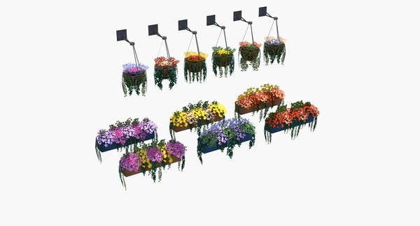 3d hanging baskets boxes