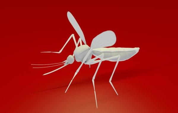 c4d aedes midge gnat mosquito