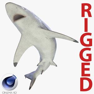 spinner shark rigged 3d c4d