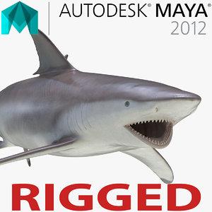 ma spinner shark rigged