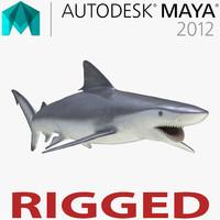 3d model smalltail shark rigged