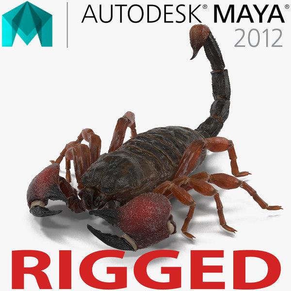 ma scorpion rigged