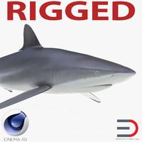 Silky Shark Rigged for Cinema 4D
