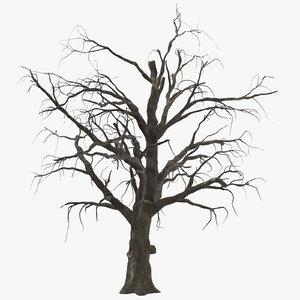 3d model old dead tree 01