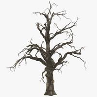 3d old dead tree 02 model