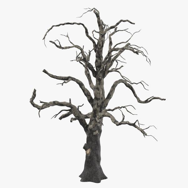old dead tree 03 3d model