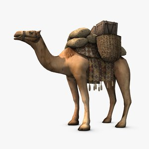 3d model loaded camel