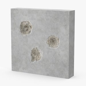 max impacts bullet holes concrete