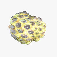 graviola soursop fruit - max