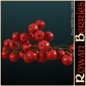 rowan berries 3d 3ds
