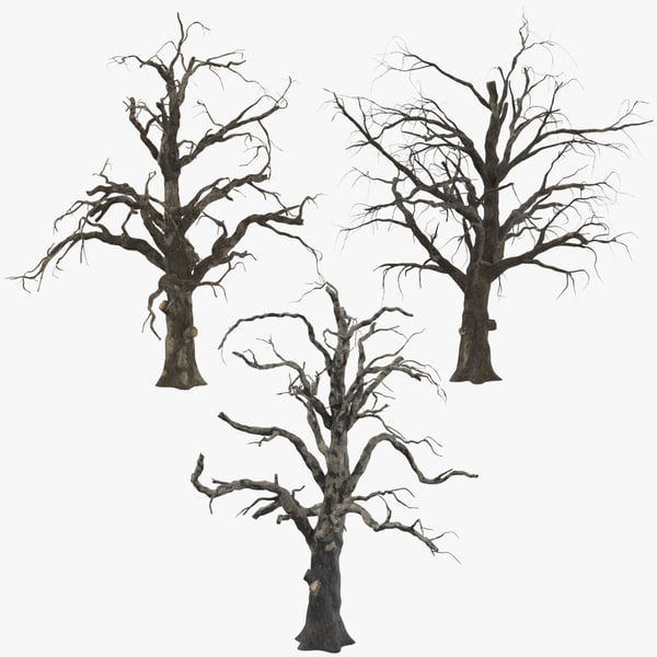 3 old dead trees c4d
