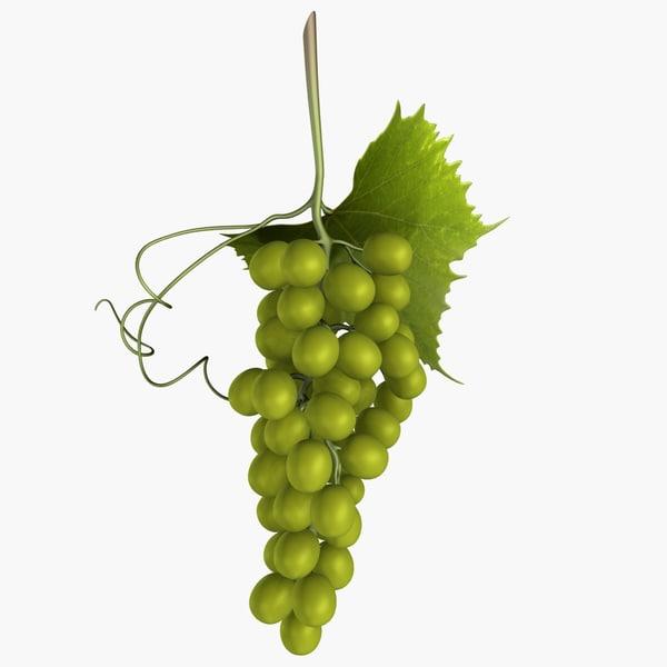 green grapes 3d max