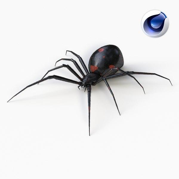3d model black widow spider
