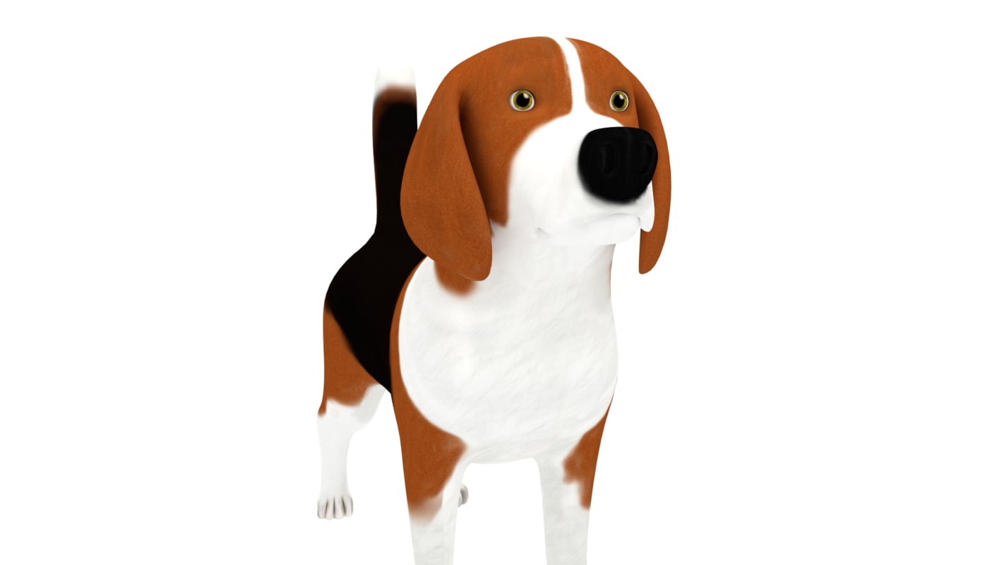 3d beagle rigged