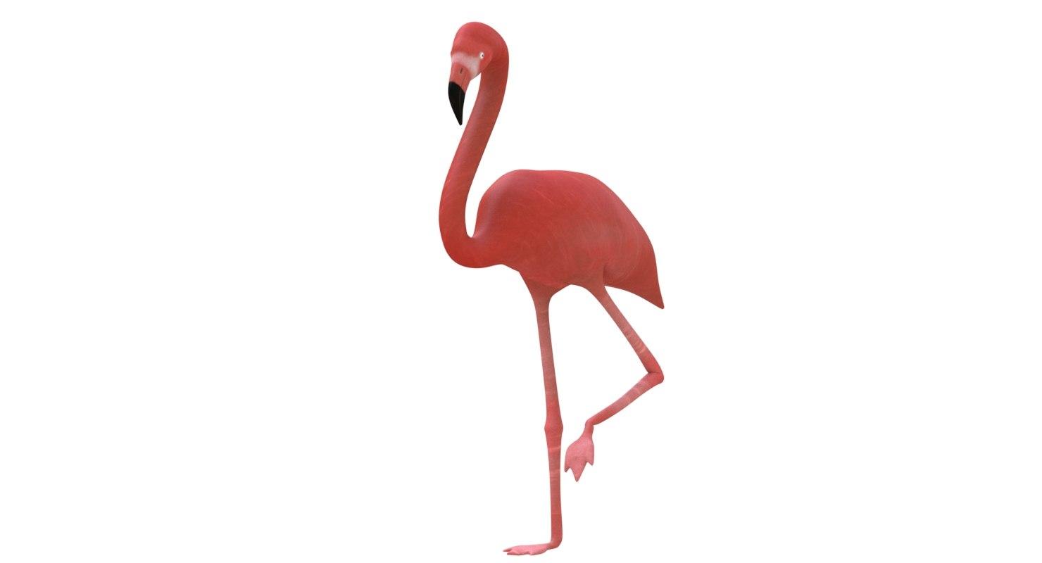 3d model flamingo