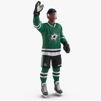 hockey player stars rigged 3d model
