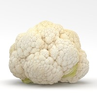 3d realistic cauliflower model