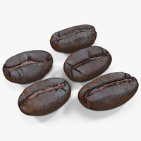 3d roasted coffee bean model