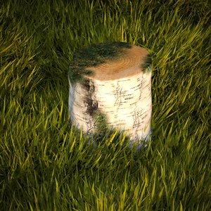 birch stump max free