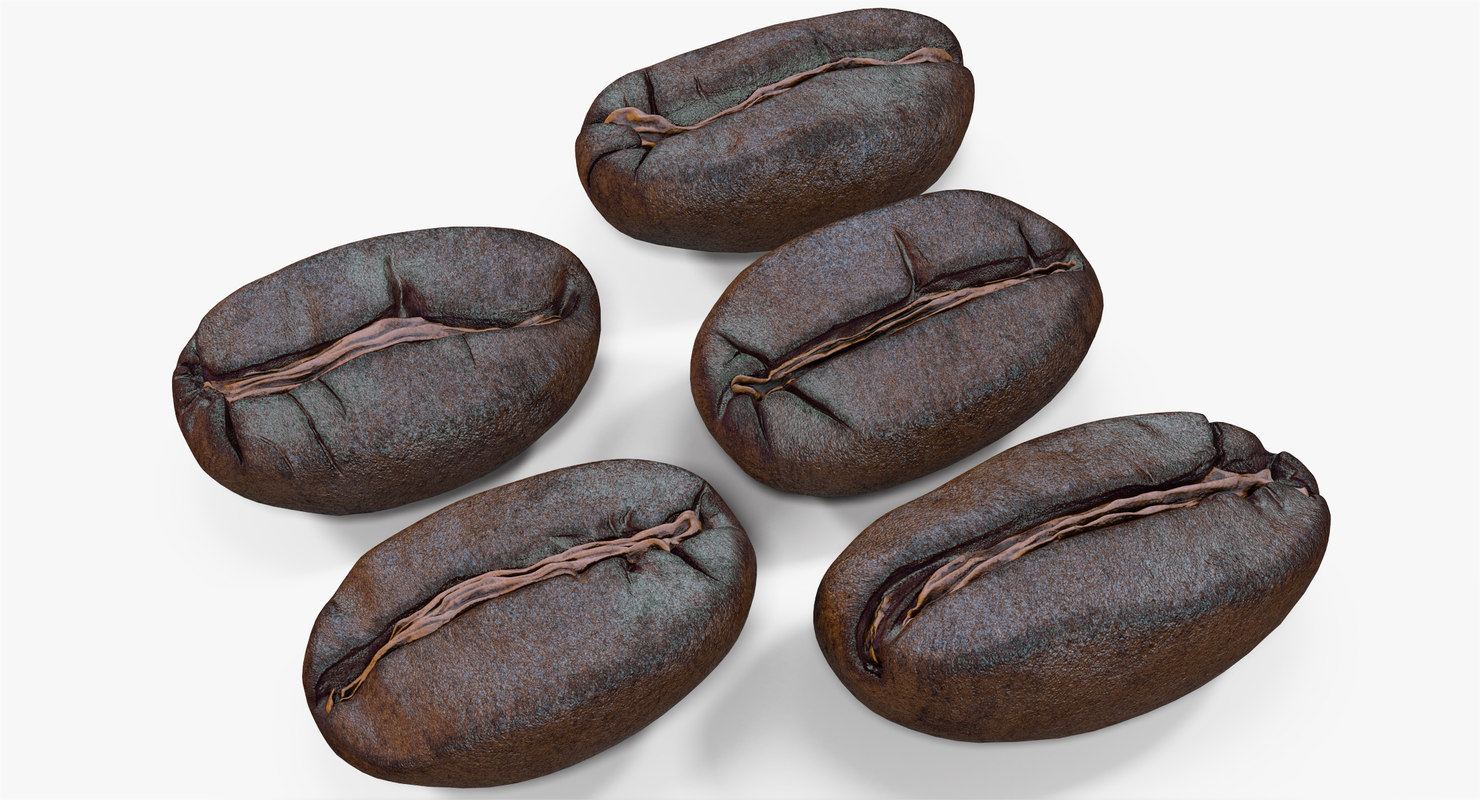 3d roasted coffee bean model
