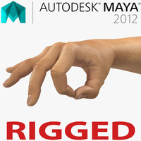 Man Hands 2 Rigged for Maya