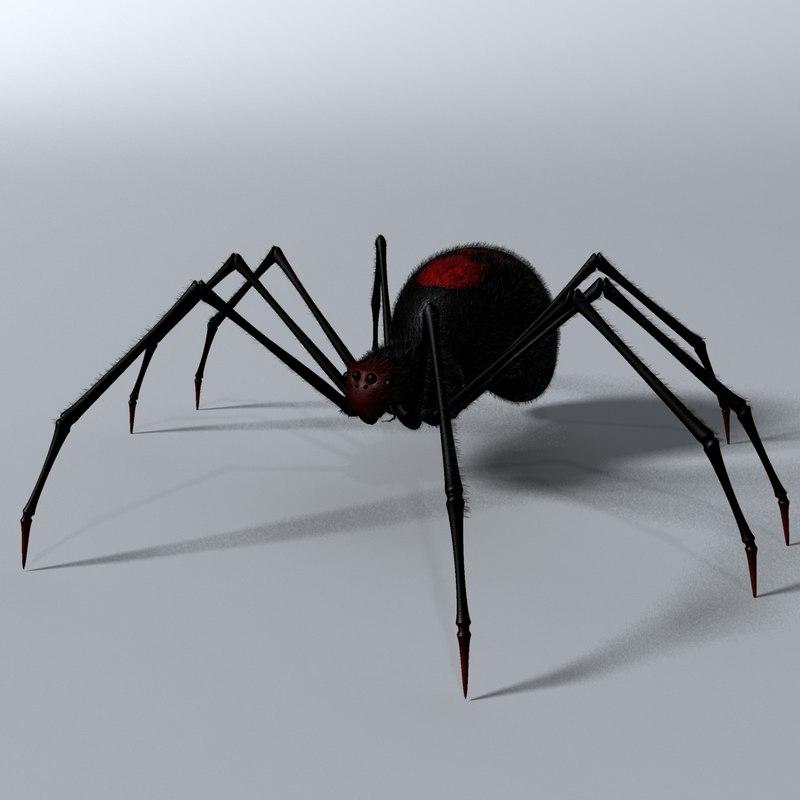 3d model black spider rigged