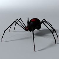 3d model black spider rigged