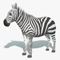 zebra fur animation 3d max