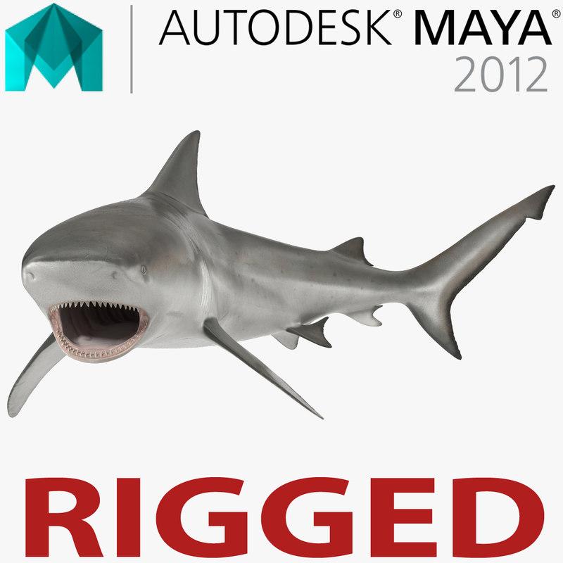 bull shark rigged 3d ma