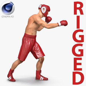 3d model of boxer man rigged