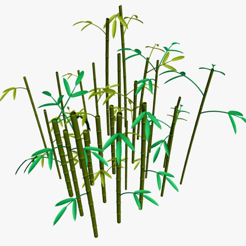 bamboo thicket max