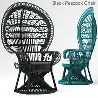 Black Peacock Chair New In