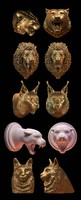 cat head collection